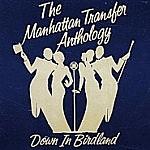 The Anthology - Down In Birdland