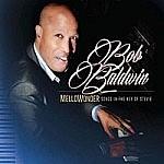 Mellowonder - Songs In The Key Of Stevie