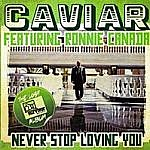 Never Stop Loving You (Ltd Edition)